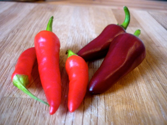 fuego and super chillis